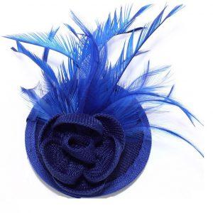 kornblå facinator hårblomma